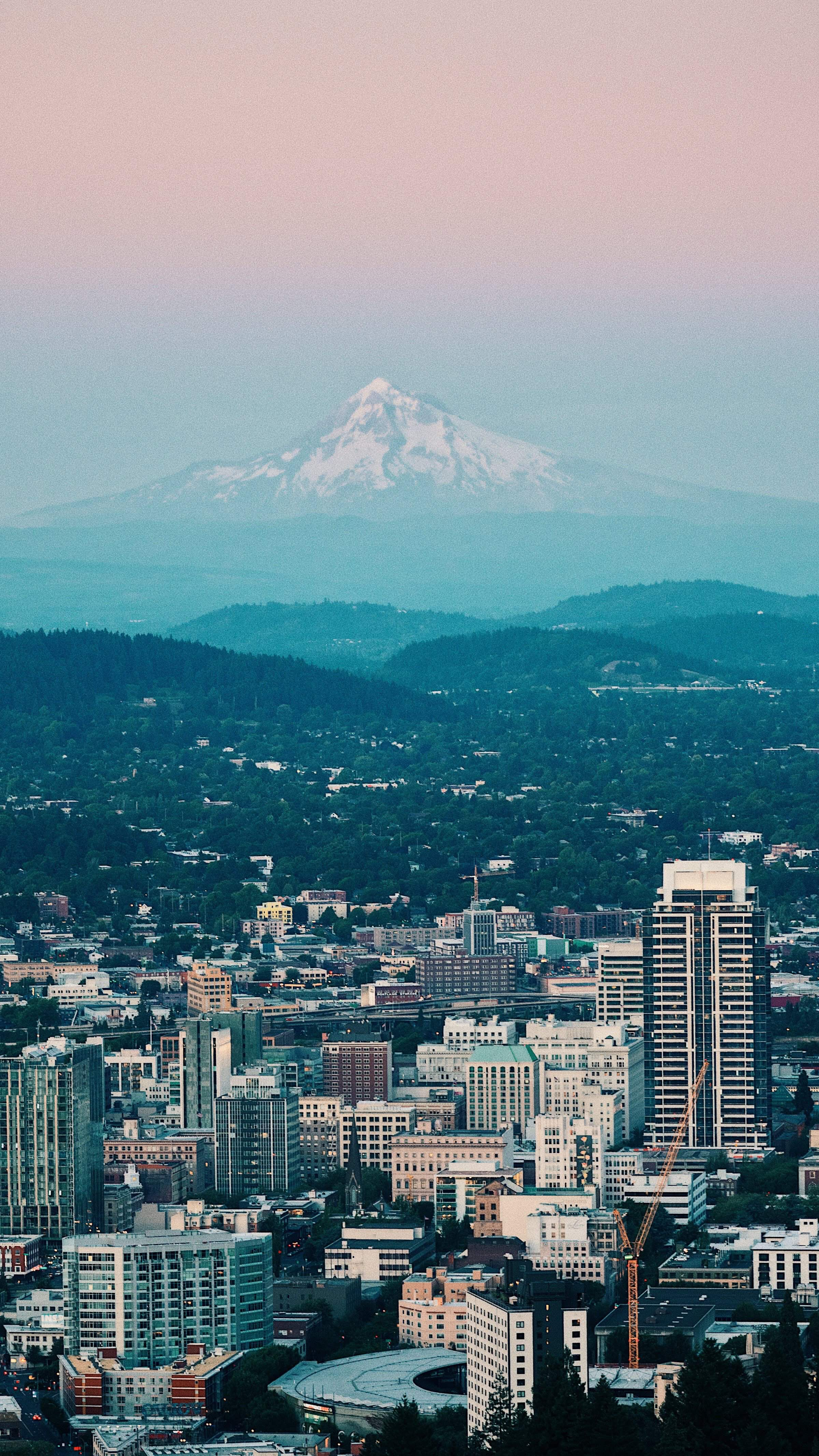 image of housing and buildings of downtown Portland, with Mount Hood in background. Photo by Umit Aslan on Unsplash.